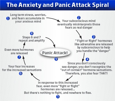 Unfortunately, like most disorders, anxiety and panic attacks work in cyclical nature.