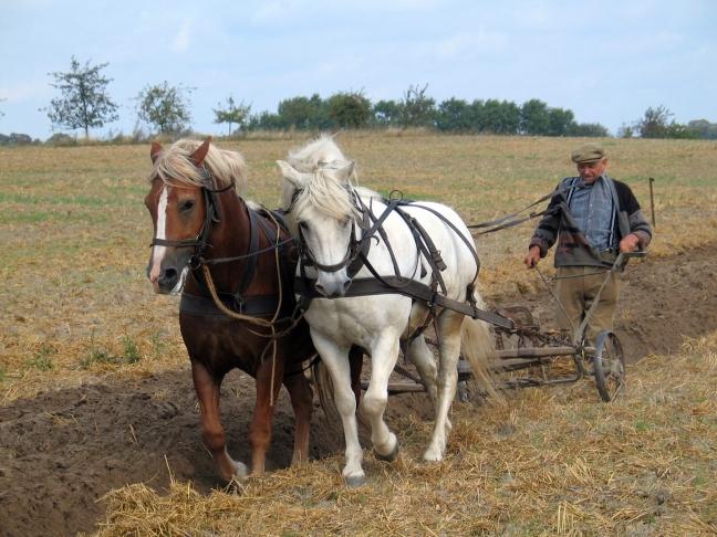 farmer_plowing_in_fahrenwalde_mecklenburg-vorpommern_germany